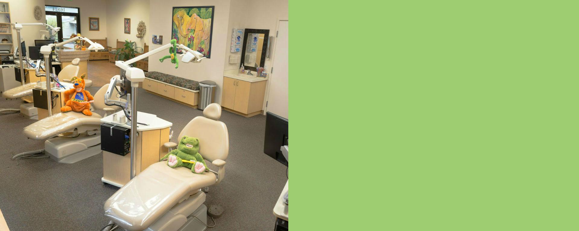 DrJennRyan-office-green